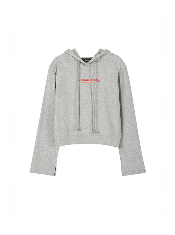 Cropped Hoodie in Grey VW8AE0620